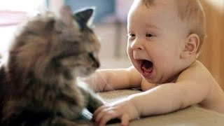 Video Cat Playing with Baby - Best of Cute Cats Love Babies Compilation MP3, 3GP, MP4, WEBM, AVI, FLV Maret 2018