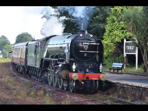 60163 'Tornado' speeds past Dawlish with 'The Torbay Expr...