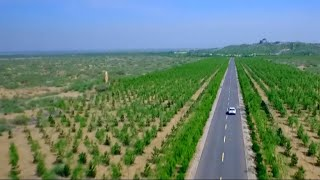 Video Can the 'Great Green Wall' stop desertification in China? MP3, 3GP, MP4, WEBM, AVI, FLV Juli 2019