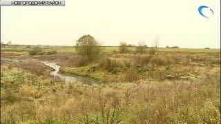 В районе деревни Чечулино завершается очистка Ручья без названия