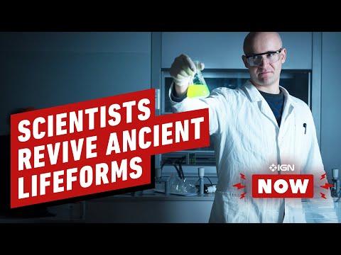 Microben uit het dinosaurustijdperk opnieuw tot leven gebracht