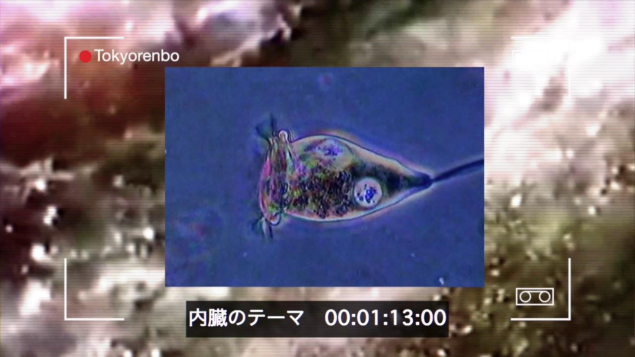 東京恋慕 - 内臓のテーマ