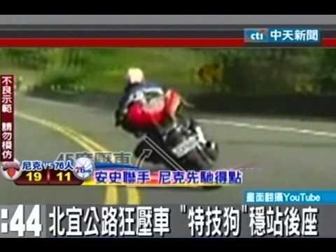 北宜公路狂壓車「特技狗」!穩站後座!