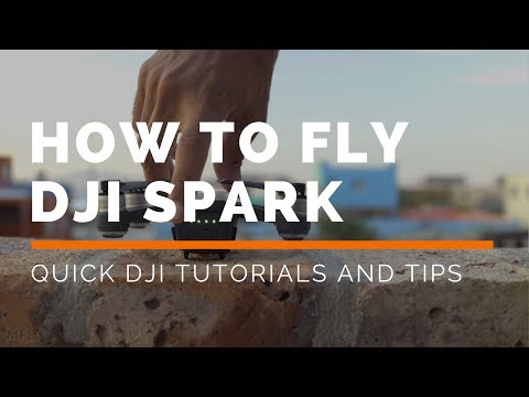 DJI Spark: How To Fly