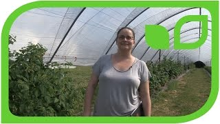 Interview mit Feli Fernandez: How I became a raspberry breeder (englisch)