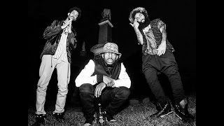 Palm Trees [Clean] - Flatbush Zombies