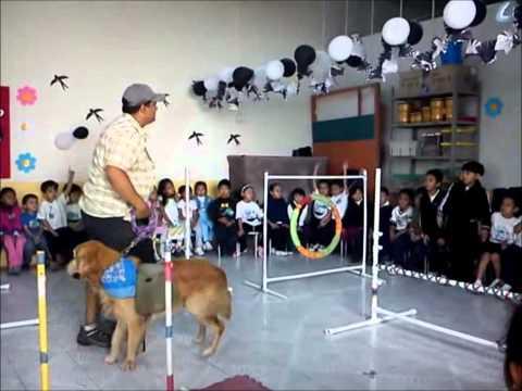 Club de Entrenadores y Conductistas Caninos plática en Jardín de Niños