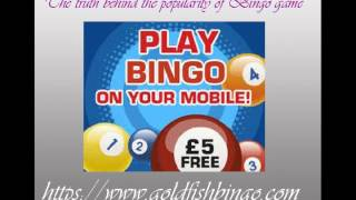 GoldFish Bingo | Exclusive Bingo Offers | Play Online Bingo Now!