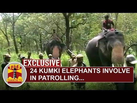 24-Kumki-Elephants-involve-in-Patrolling-to-prevent-Penetration-of-Maoists-at-Nilgiris-District
