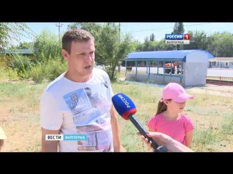 В Волгограде проспект Жукова утопает в сорняках