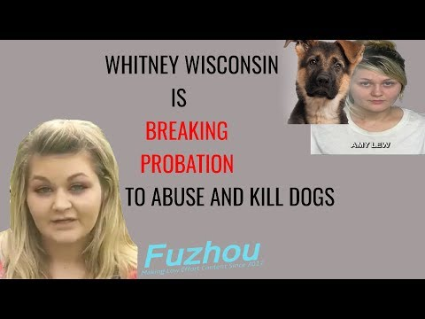 Video Whitney Wisconsin is Breaking Her Probation And Doing Disgusting Things download in MP3, 3GP, MP4, WEBM, AVI, FLV January 2017
