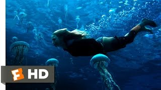 Nonton The Shallows (8/10) Movie CLIP - Jellyfish Swim (2016) HD Film Subtitle Indonesia Streaming Movie Download