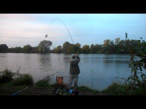 Фидерная рыбалка в сентябре на нижней Москве реке.