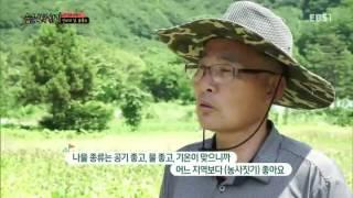 #57 숨은 한국 찾기 (3) - 신비의 섬, 울릉도