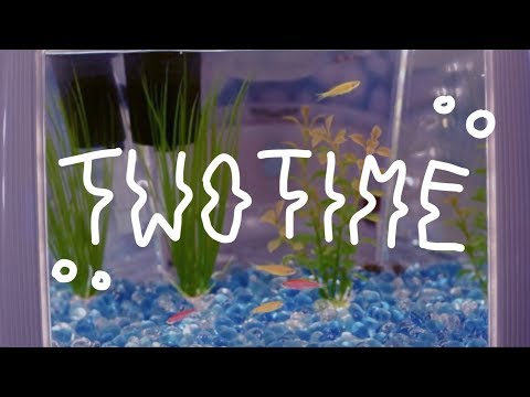 Jack Stauber ─ Two Time [full Lyrics]