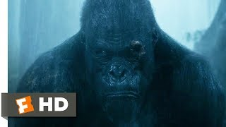 Nonton The Legend Of Tarzan  2016    Rescuing Akut Scene  6 9    Movieclips Film Subtitle Indonesia Streaming Movie Download