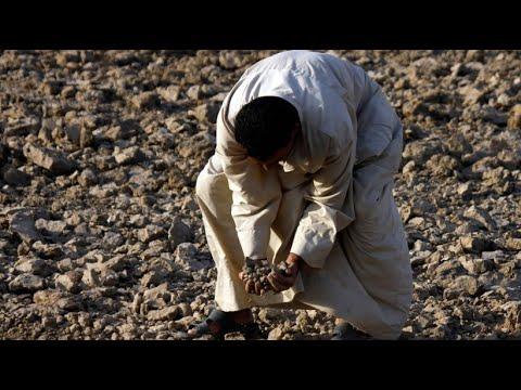 Landwirtschaftsministerium Iraks verhängt schwerwie ...