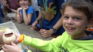 Best Birthday Ever with 27 Future Giant Snakes by Prehistoric Pets TV