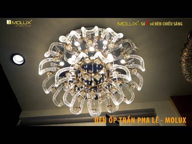 Showroom Molux -Số 1 về Đèn chiếu sáng - Đèn trang trí