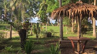I am visiting Vanuatu at the same time as my sister and brother who are both building houses there to return on a more permanent...