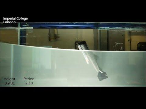 Robotik: Der fliegende Roboterfisch hebt ab