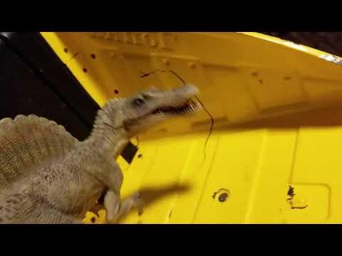 Godzilla and rexy season 7 episode 38 the killer raptor (Halloween special)