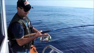 Video Pescaria no Micas MP3, 3GP, MP4, WEBM, AVI, FLV Desember 2017