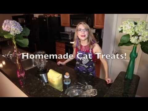 Make Cat Treats Using Only 4 Ingredients!