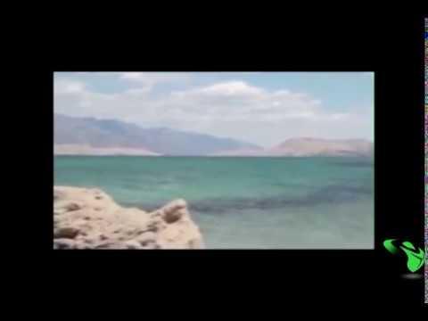 Video مفاجأة مرعبة ظهور حورية البحر حقيقية Amazing Mermaid On The Rock sirena real download in MP3, 3GP, MP4, WEBM, AVI, FLV January 2017