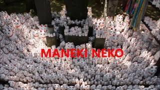 Let's go see Maneki Neko! Gotokuji in Tokyo Setagaya