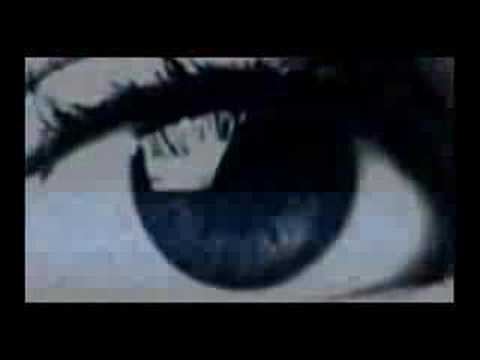 El Observador (Cortometraje 2003)