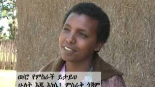 Amhara Development Association 01-03