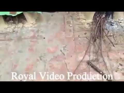 Video New Punjabi song 3gp download download in MP3, 3GP, MP4, WEBM, AVI, FLV January 2017