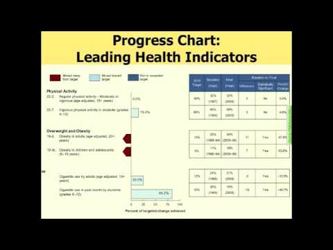 Healthy People 2010 Final Review Webinar (Part 3 of 7)