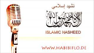 Liman Ya Habeebo Nasheed I نشيد لمن يا حبيب