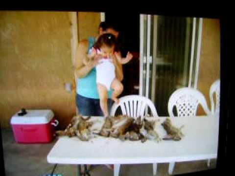 Rabbit Hunting California 09