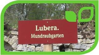 Der Lubera Mundraubgarten auf Schloss Ippenbrug wird gepflanzt