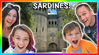 Video SARDINES IN A REAL CASTLE! | HIDE AND SEEK | We Are The Davises MP3, 3GP, MP4, WEBM, AVI, FLV Maret 2019