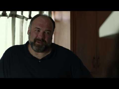 Enough Said (2013) Clip - Julia Louis-Dreyfus and James Gandolfini