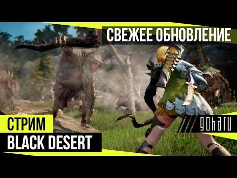 Black Desert - Разбираем свежее обновление
