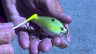Video Kevin Short Talks About Customizing Baits for More Bites MP3, 3GP, MP4, WEBM, AVI, FLV Agustus 2018