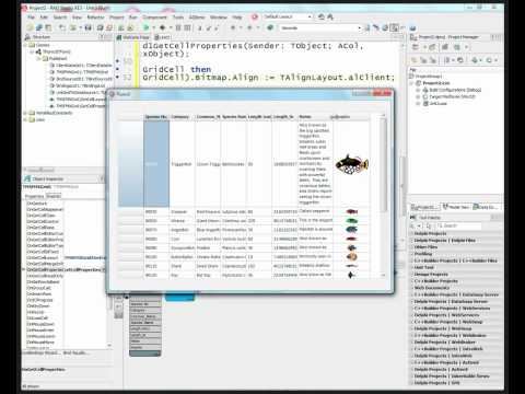 Using TMS Grid for FireMonkey in your Windows and Mac Applications