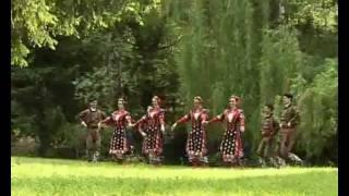 Володя Стоянов - Македонско сърце, лудо носам