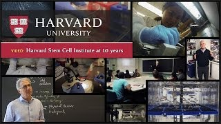 Nonton The Harvard Stem Cell Institute At 10  Moving Toward The Clinic Film Subtitle Indonesia Streaming Movie Download