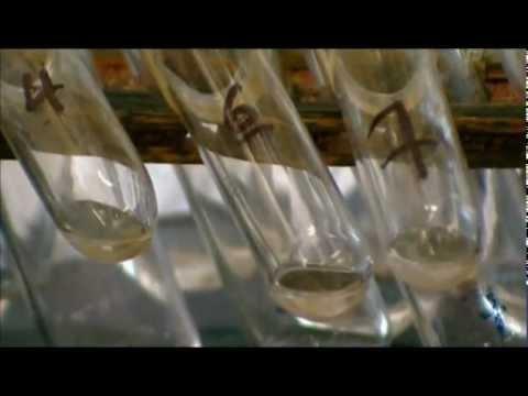 История одного обмана или глобальное потепление - Документальный фильм