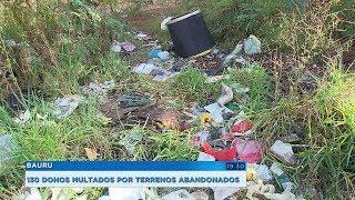 Donos de terrenos que não fazem a limpeza da área são multados em Bauru