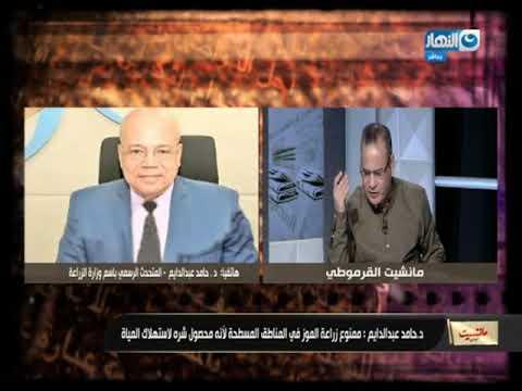 العرب اليوم - شاهد| تعرف على محصول الكينوا الجديد الذي سيحل مشاكل كثيرة في مصر