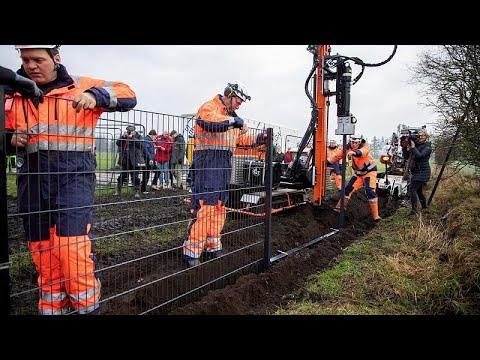 Δανία: Φράκτης στα σύνορα με την Γερμανία για την γρίπη των χοίρων…