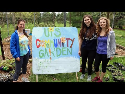 Featured Video: Leadership lived: Community Garden