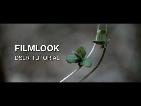 DSLR Tutorial: How to get the Filmlook & what you're doing wrong!